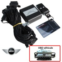Mini Electronic anti thefts on OBD plug