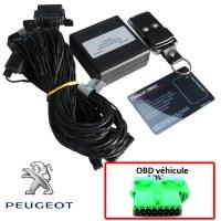 Antivol électronique sur prise OBD Peugeot